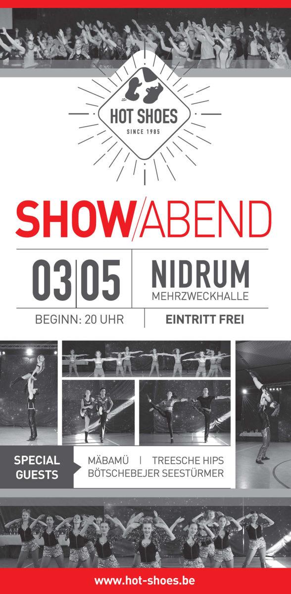 HS Plakat Showabend19 210x420 web